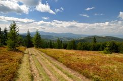 Mountain trail. Hiking trail running through meadow in Beskidy Mountains royalty free stock photography