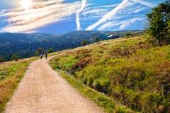 Mountain trail in Karkonosze stock photos