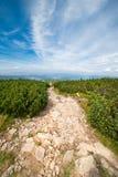 Mountain trail landscape Stock Photo
