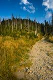 Mountain trail - Lysa hora Stock Photos