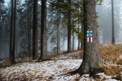 Mountain Trail Markers in Misty Forest Stock Images