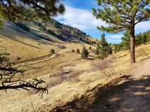 Mountain Trail, Mt. Sanitas, Colorado. While this picture was taken in mid-March, it was already Spring in the Rockies. The Mt. Sanitas park is outside Boulder Stock Images