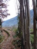 Mountain trail Royalty Free Stock Photos