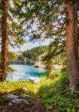 A Walk to the Lake. Mountain trail with pine trees lining it and a mountain lake in the distance Royalty Free Stock Photography