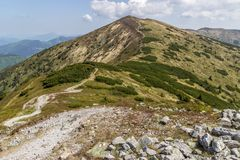 Mountain trail in Slovakia stock images