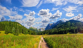 On a mountain trail stock images