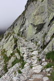 Mountain trail Stock Photography