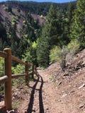Mountain Trail View