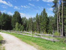 Mountain trail with wooden fence foreground and forest with sky in background. Fie allo Sciliar, South Tyrol, Italy Royalty Free Stock Photography