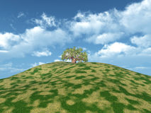 Mountain with Tree Stock Images