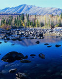 Mountain tree and lake in Xinjiang Royalty Free Stock Image