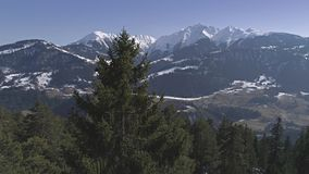 Mountain Tree Panorama View Aerial 4k stock footage
