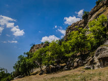 Mountain trees. In the Bakhchisaray, Crimea Stock Photo