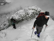 Mountain trekking. (Two hiker in mountains Stock Images