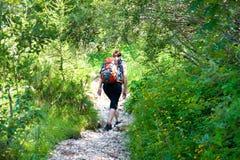 Mountain trekking stock images