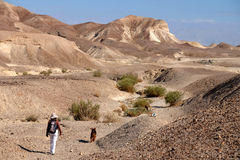 Mountain trekking in Judea Desert. Stock Photography