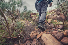 Mountain trekking man Royalty Free Stock Image