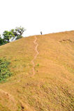 Mountain trekking. Someone walking on a hiking trail of the Monjong mountain. Thailand Royalty Free Stock Photo