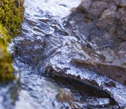Mountain trickle with ice after night frosts in autumn. Royalty Free Stock Photo