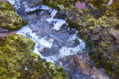 Mountain trickle with ice after night frosts Royalty Free Stock Photos