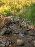 Mountain Trickling Stream Water Scene royalty free stock photography
