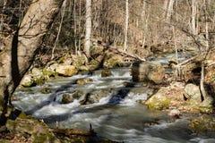 Mountain Trout Stream Стоковая Фотография