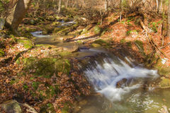Mountain Trout Stream - 3 Stock Image