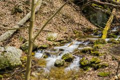 Mountain Trout Stream. An  mountain trout stream located in the Blue Ridge Mountains of Virginia, USA Stock Images