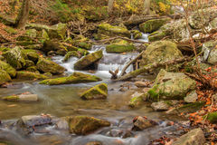 Mountain Trout Stream - 1 Royalty Free Stock Photos