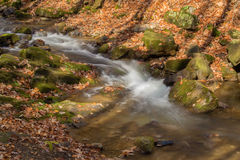 Mountain Trout Stream - 2 Stock Photo