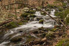 Mountain Trout Stream. Wild mountain trout stream located in the Blue Ridge Mountains of Virginia, USA Royalty Free Stock Photo