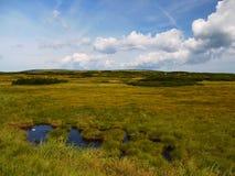Mountain tundra. On the Giant Mountains with small lakes Royalty Free Stock Photo
