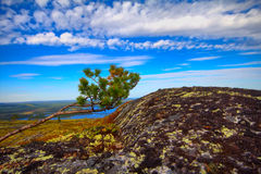 Mountain tundra in Lapland Royalty Free Stock Image