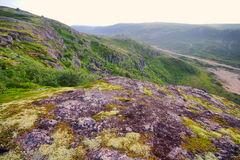 Mountain tundra in Lapland Stock Photography