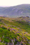 Mountain tundra in Lapland Royalty Free Stock Photography