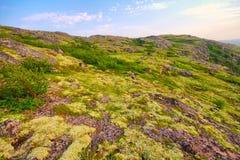 Mountain tundra in Lapland Stock Image