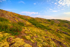 Mountain tundra in Lapland Stock Image