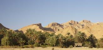Mountain Tunisian oasis Stock Photography