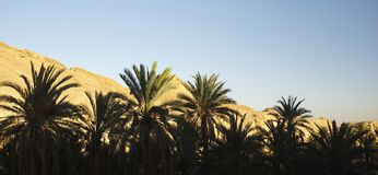 Mountain Tunisian oasis Royalty Free Stock Images
