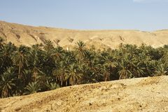 Mountain Tunisian oasis Royalty Free Stock Photos