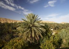 Mountain Tunisian oasis Stock Photo