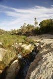 Mountain Tunisian oasis Royalty Free Stock Photos