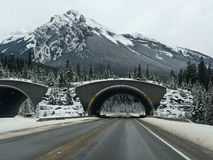 Mountain tunnels. Wintertime highway running through the rocky mountains near banff canada Stock Images
