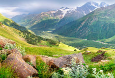 Mountain valley. Large mountain valley. Fresh Spring Arrangement Stock Photo