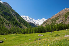 Mountain valley. In Gran Paradiso National Park, Italy Royalty Free Stock Photo