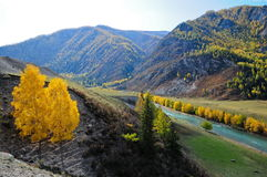 Mountain valley. The Russian Federation. Western Siberia. Mountain Altai stock image