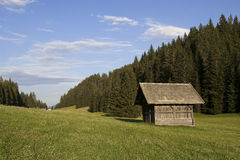 Mountain valley in austrian alps in summer Royalty Free Stock Image