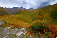 Mountain valley of the Caucasus in Georgia Royalty Free Stock Images