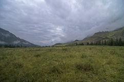 Mountain valley covered with low clouds. Stock Photos