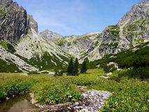 Mountain valley in High Tatras. Royalty Free Stock Photography